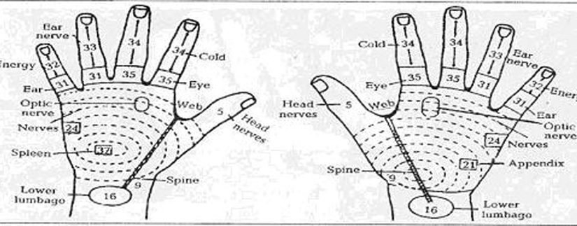 Acupressure Therapy and Practices